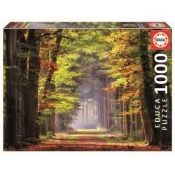 Puzzle 1000 Piezas Paseo Otoñal