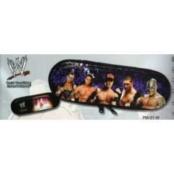 CAJA METAL CYP WWE CREMALLERA PM-01-W